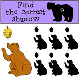 Children games: Find the correct shadow.. Cute bear looks at the beehive with honey Stock Photo