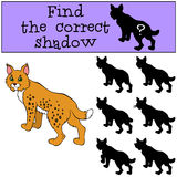 Children games: Find the correct shadow. Cute beautiful lynx. Children games: Find the correct shadow. Cute beautiful lynx stands and smiles Royalty Free Stock Image