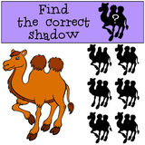 Children games: Find the correct shadow. Cute camel. Children games: Find the correct shadow. Cute camel stands and smiles Stock Photo