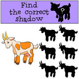 Children games: Find the correct shadow. Cute goat smiles. Children games: Find the correct shadow. Cute goat stands and smiles Royalty Free Stock Images