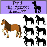 Children games: Find the correct shadow. Cute horse. Stock Photos
