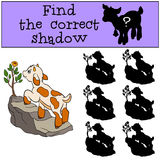 Children games: Find the correct shadow.. Children games: Find the correct shadow. Cute little baby goat stands on the rock and looks at the flower Royalty Free Stock Photos