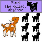Children games: Find the correct shadow. Cute little baby goat. Children games: Find the correct shadow. Cute little baby goat stands and smiles Royalty Free Stock Photography