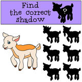 Children games: Find the correct shadow. Cute little baby goat. Children games: Find the correct shadow. Cute little baby goat stands and smiles Stock Photo