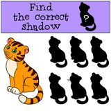 Children games: Find the correct shadow. Cute little baby tiger. Sits and smiles Royalty Free Stock Image