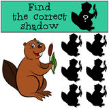 Children games: Find the correct shadow. Cute little beaver. Stock Photo