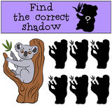 Children games: Find the correct shadow. Cute little koala. Children games: Find the correct shadow. Cute little koala sits on the tree and smiles Royalty Free Stock Images