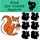 Children games: Find the correct shadow. Cute little squirre. Children games: Find the correct shadow. Cute little squirrel holds an acorn in the hands Royalty Free Stock Photo