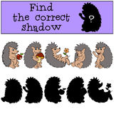 Children games: Find the correct shadow. Hedgehog. Children games: Find the correct shadow. Five hedgehoges Royalty Free Stock Photography