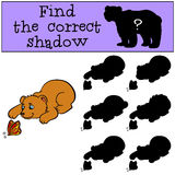 Children games: Find the correct shadow. Little cute baby bear. Children games: Find the correct shadow. Little cute baby bear looks at the butterfly Stock Photos