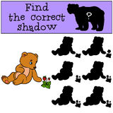 Children games: Find the correct shadow. Little cute baby bear. Children games: Find the correct shadow. Little cute baby bear looks at the strawberry Royalty Free Stock Photo