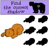 Children games: Find the correct shadow. Little cute baby bear. Children games: Find the correct shadow. Little cute baby bear sleeps Royalty Free Stock Image