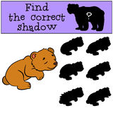 Children games: Find the correct shadow. Little cute baby bear. Royalty Free Stock Images