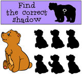 Children games: Find the correct shadow. Little cute baby bear. Children games: Find the correct shadow. Little cute baby bear smiles Royalty Free Stock Photo