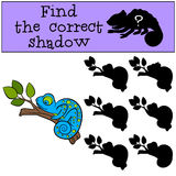 Children games: Find the correct shadow.. Little cute blue chameleon sleeps on the tree branch Royalty Free Stock Image