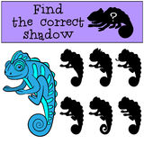 Children games: Find the correct shadow.. Little cute blue chameleon smiles Royalty Free Stock Image