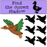 Children games: Find the correct shadow. Little cute duck. Children games: Find the correct shadow. Little cute duck flys and smiles Royalty Free Stock Photography
