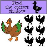 Children games: Find the correct shadow. Little cute duck. Children games: Find the correct shadow. Little cute duck runs and waves her wings Royalty Free Stock Photography