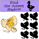 Children games: Find the correct shadow. Little cute duckling. Children games: Find the correct shadow. Little cute duckling in the egg Stock Image