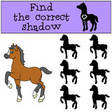 Children games: Find the correct shadow. Little cute foal. Stock Image