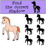 Children games: Find the correct shadow. Little cute foal. Stock Images