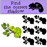 Children games: Find the correct shadow.  Royalty Free Stock Photography