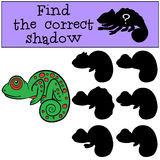 Children games: Find the correct shadow.. Little cute green chameleon smiles Stock Images