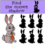 Children games: Find the correct shadow. Little cute hare. Children games: Find the correct shadow. Little cute hare sits and holds a carrot in the hands Stock Image