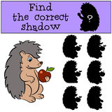 Children games: Find the correct shadow. Little cute hedgehog. Children games: Find the correct shadow. Little cute hedgehog holds an apple in the hand Stock Photo