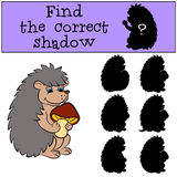 Children games: Find the correct shadow. Little cute hedgehog. Children games: Find the correct shadow. Little cute hedgehog holds a mushroom in the hands and Stock Image