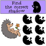 Children games: Find the correct shadow.Little cute hedgehog. Children games: Find the correct shadow.Little cute hedgehog sits and holds a flower in the paw Royalty Free Stock Photo