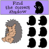 Children games: Find the correct shadow. Little cute hedgehog. Children games: Find the correct shadow. Little cute hedgehog sleeps and smiles Stock Photos