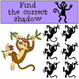 Children games: Find the correct shadow. Little cute monkey. Children games: Find the correct shadow. Little cute monkey hangs on the liana and holds the flower Stock Images