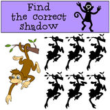 Children games: Find the correct shadow. Little cute monkey. Children games: Find the correct shadow. Little cute monkey hangs on the tree Royalty Free Stock Image