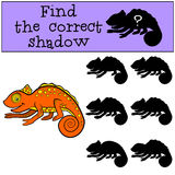 Children games: Find the correct shadow.. Little cute orange chameleon smiles Stock Photography