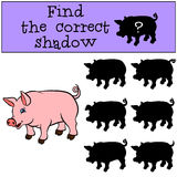 Children games: Find the correct shadow. Little cute pig. Stock Images
