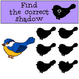Children games: Find the correct shadow. Little cute titmouse. Children games: Find the correct shadow. Little cute titmouse smiles Stock Images