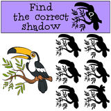 Children games: Find the correct shadow. Little cute toucan. Children games: Find the correct shadow. Little cute toucan sits on the tree branch and smiles Stock Images