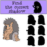 Children games: Find the correct shadow. Mother hedgegod with her  baby hedgehog. Children games: Find the correct shadow. Mother hedgegod sits with her little Royalty Free Stock Photography