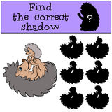 Children games: Find the correct shadow. Mother hedgehog with her little cute baby hedgehog. Children games: Find the correct shadow. Mother hedgehog plays with Royalty Free Stock Photos