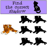 Children games: Find the correct shadow. Mother tiger lays with her little cute baby. Children games: Find the correct shadow. Mother tiger lays with her little Royalty Free Stock Photography