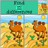 Children games: Find differences. Cute camel. Children games: Find differences. Cute camel stands on the send in the desert and smiles Royalty Free Stock Photos