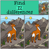 Children games: Find differences. Cute little antelope . Children games: Find differences. Cute little antelope stands on the rocks and smiles Stock Photos