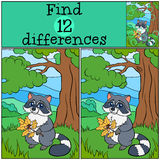 Children games: Find differences. Cute little raccoon. Stock Images