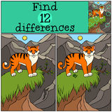 Children games: Find differences. Cute little tiger. Stock Photos