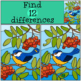 Children games: Find differences. Cute little titmouse. Children games: Find differences. Cute little titmouse sits on the ash twig and smiles Stock Photo