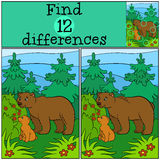 Children games: Find differences. Daddy bear. With his little cute baby bear looks at the raspberry in the forest Royalty Free Stock Images