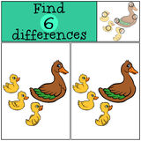 Children games: Find differences. Duck and three ducklings. Children games: Find differences. Duck and three ducklings swims Royalty Free Stock Photos