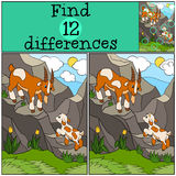 Children games: Find differences. Father goat with his baby. Children games: Find differences. Father goat with his little cute baby goat on the rocks Royalty Free Stock Images