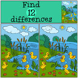 Children games: Find differences. Five little cute ducklings. Children games: Find differences. Five little cute ducklings play near the lake Stock Photo